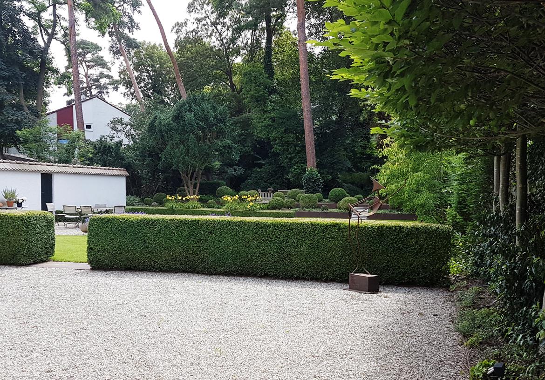 buchsbaum-pflege_1