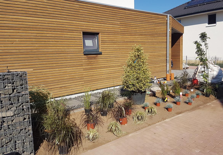 bepflanzung eines modernen vorgartens andr braunbeck meister im garten und landschaftsbau. Black Bedroom Furniture Sets. Home Design Ideas