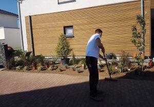 bepflanzung-vorgarten_3